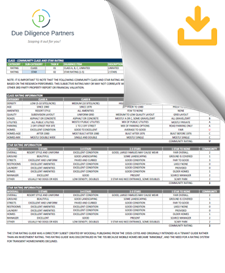 Example Due Diligence Report